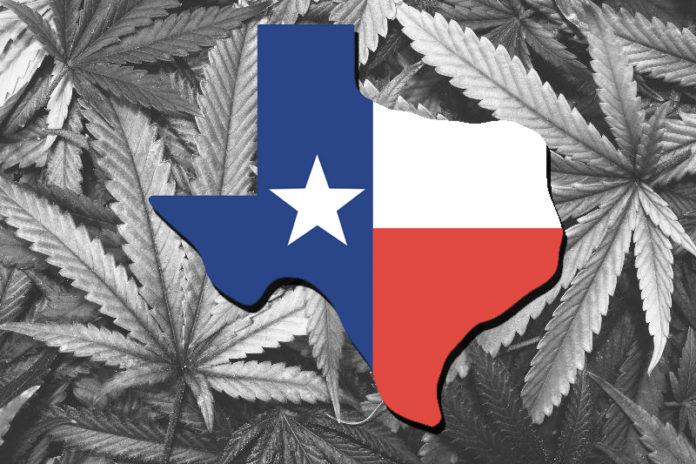 Marijuana | Houston