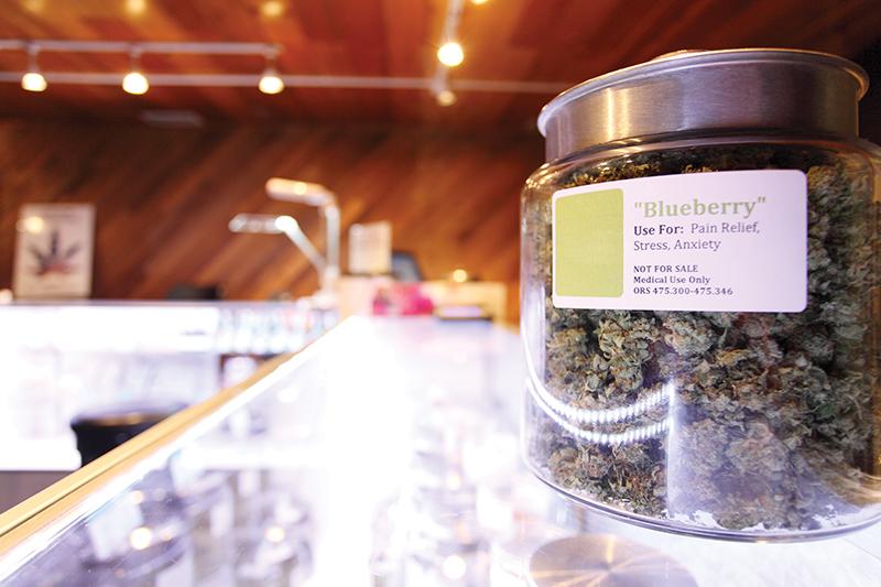 Cannabis Conversations