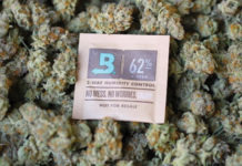 Boveda Cannabis
