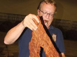 Mark Ryan of Daughters & Ryan Handling Perique Tobacco