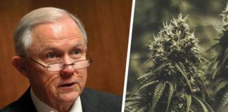 Is Cannabis Under Attack?