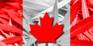 Canada Federally Legalizes Recreational Cannabis