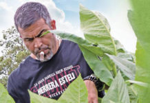 Drew Estate Rebrands Herrera Esteli and Extends Lines