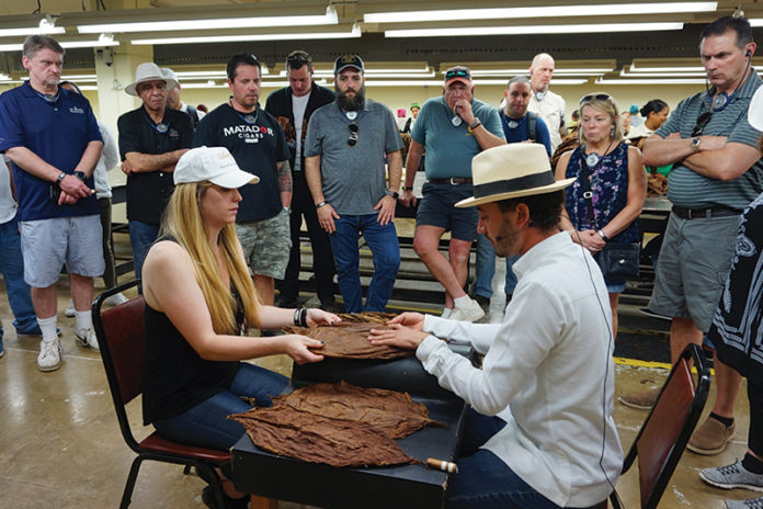 Kim Squires of Squire Cigars inspects a leaf of tobacco with Klaas Kelner.