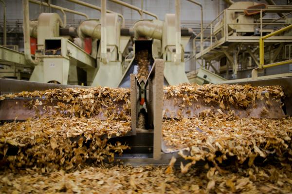 U.S. Tobacco Cooperative