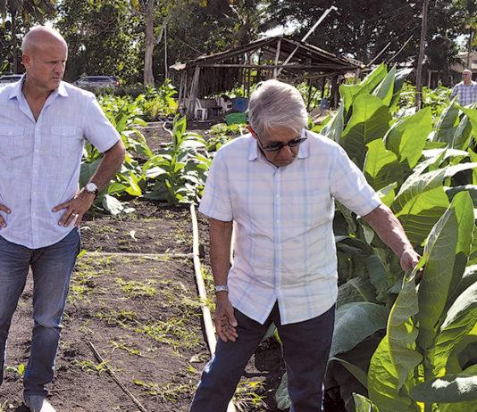 Luis and Luis Cuevas Jr. | Cuevas Cigars