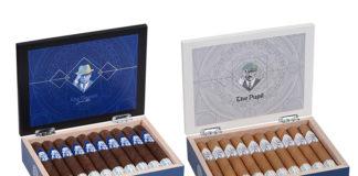 Ventura Cigar   Archetype Master and Pupil