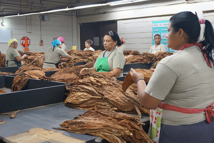 Cigar Factories Around the World Impacted by Coronavirus