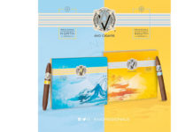 Davidoff Ships AVO Regional North and South