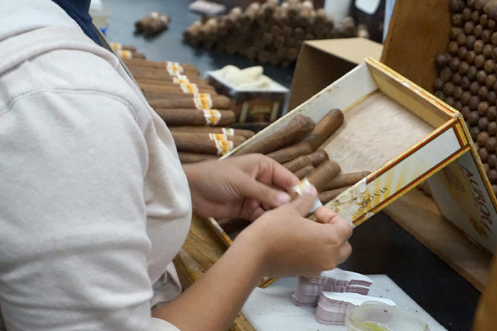 Dominican Republic Sees Increase in Cigar Exports