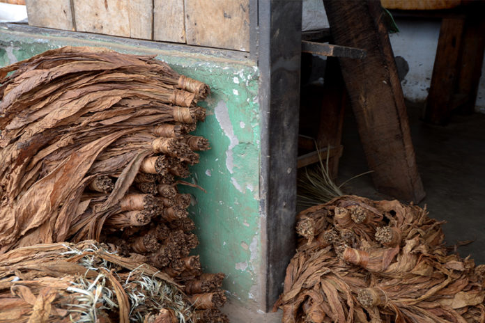 CBP Modifies Withhold Release Order for Some Malawi Tobacco Imports